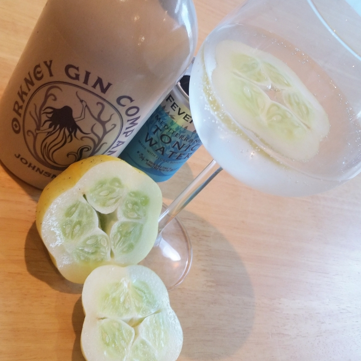 Gin Orkney eeview